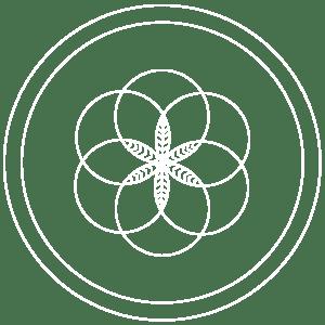 detox-bio-clinica-marbella