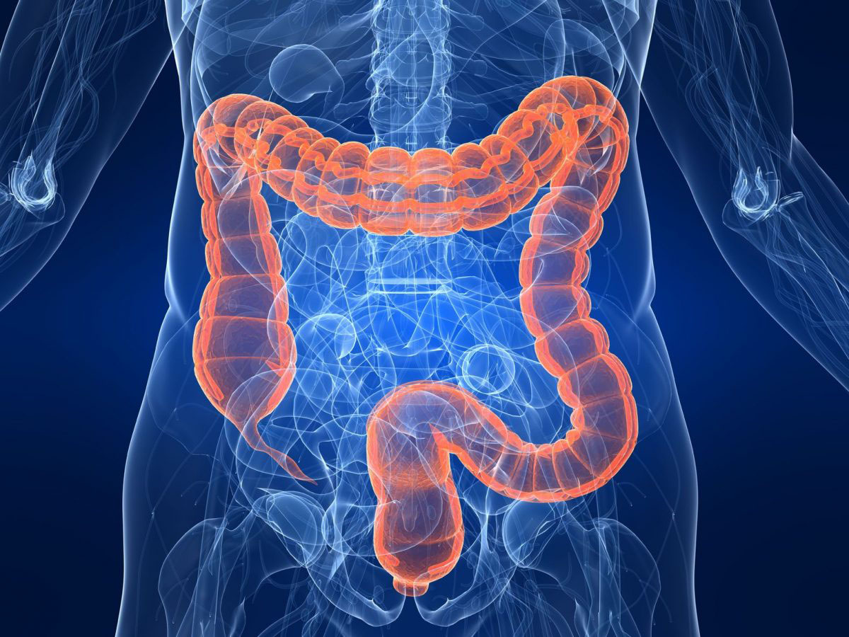 colon-limpieza-cleanse-hydrocolon-therapy-bioclinica-marbella